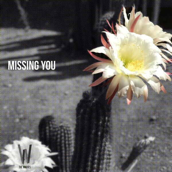 Cover art for Missing You